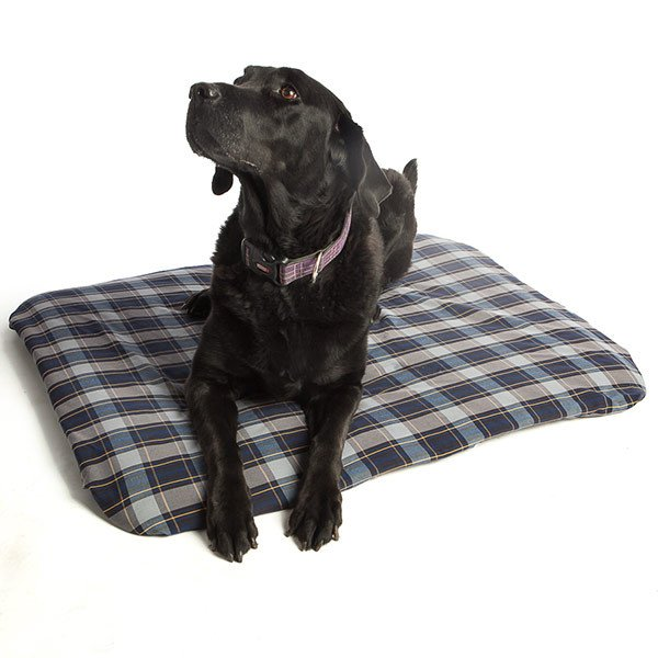 Magnetic Pet Bed Extra Large Full Size Image #1
