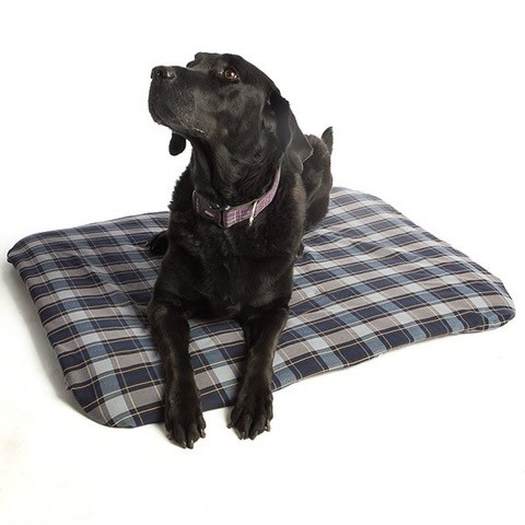 Magnetic Pet Bed Small Full Size Image #1